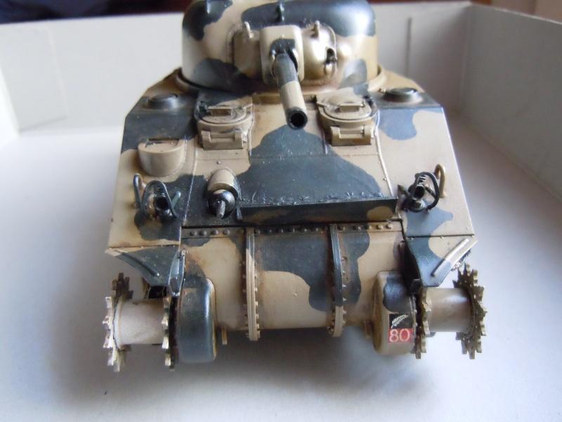 [1/35] Sherman Mk III kiwi - Page 2 Dscn2517