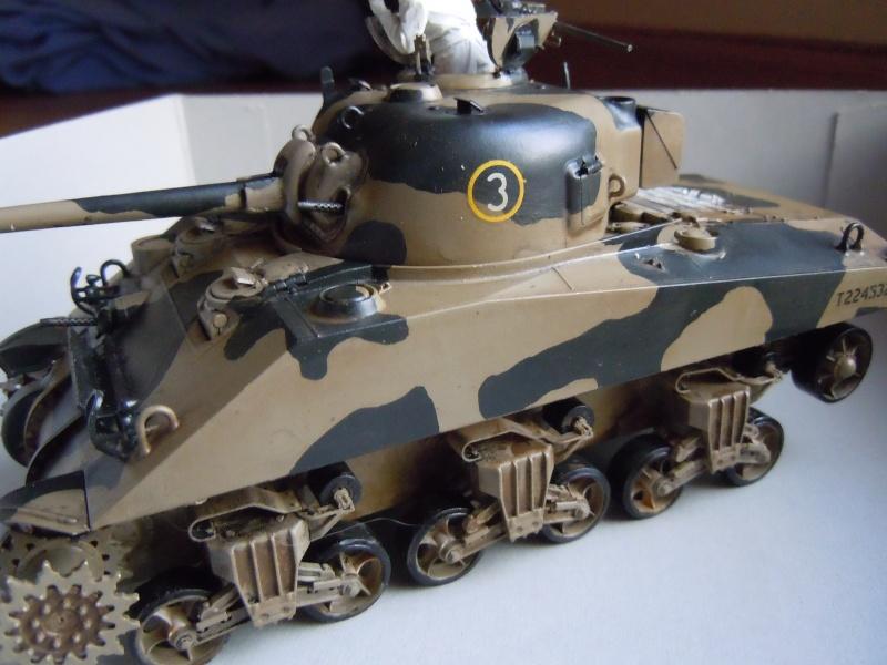 [1/35] Sherman Mk III kiwi - Page 2 Dscn2518