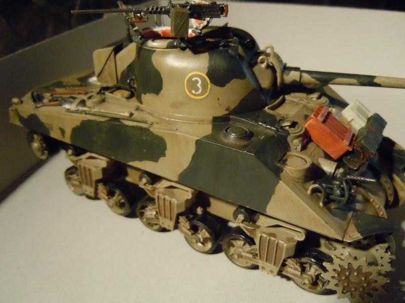 [1/35] Sherman Mk III kiwi - Page 2 Dscn2519