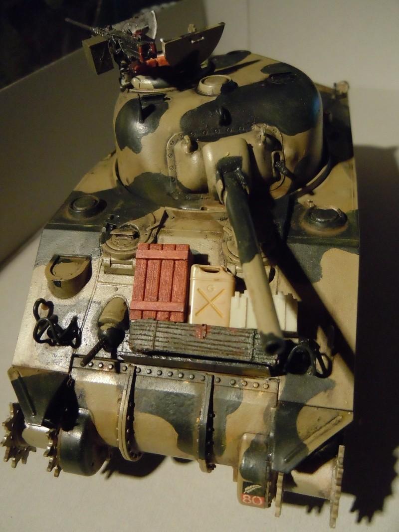 [1/35] Sherman Mk III kiwi - Page 2 Dscn2520