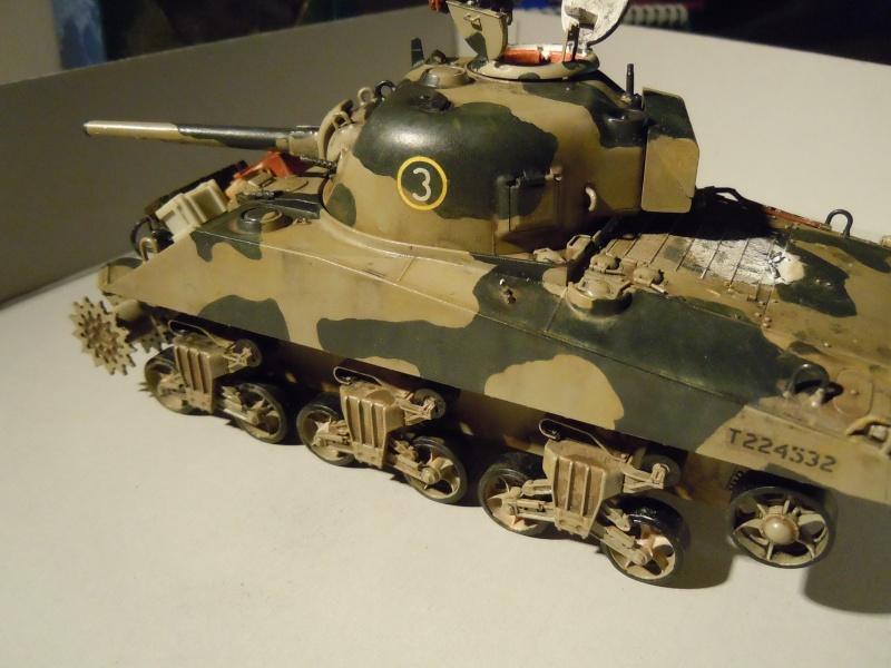 [1/35] Sherman Mk III kiwi - Page 2 Dscn2521