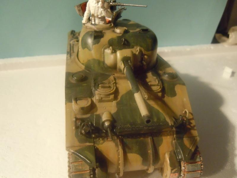 [1/35] Sherman Mk III kiwi - Page 2 Dscn3111