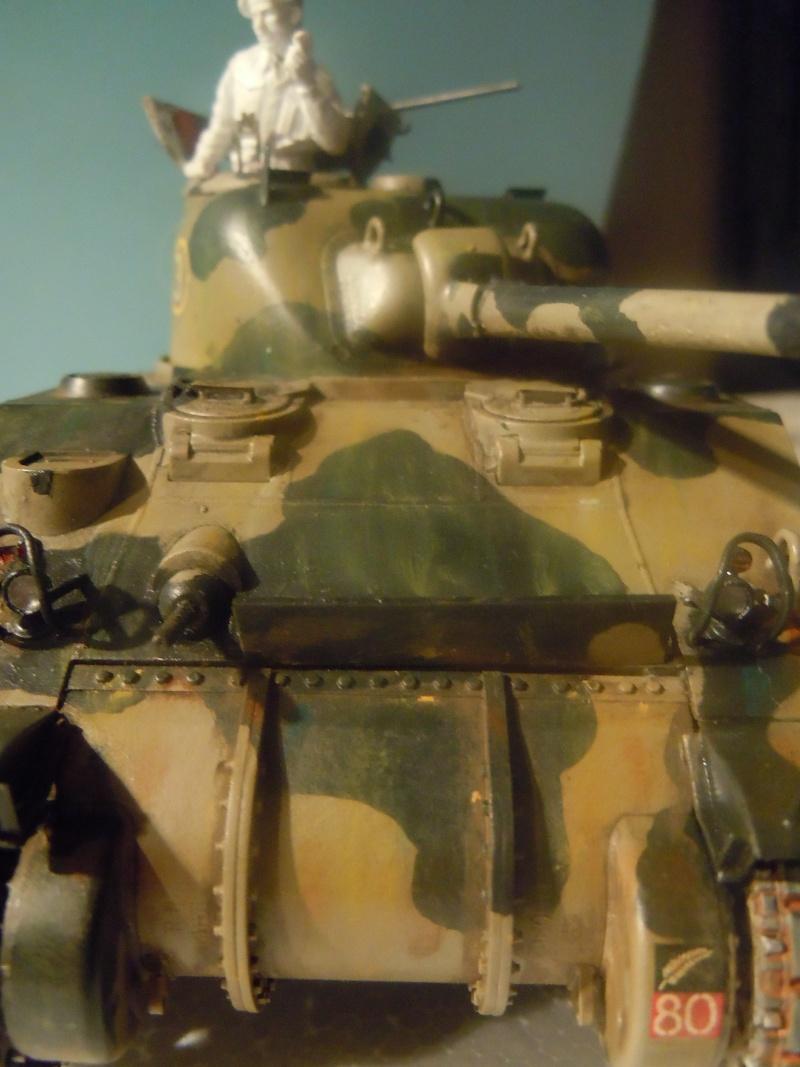 [1/35] Sherman Mk III kiwi - Page 2 Dscn3114
