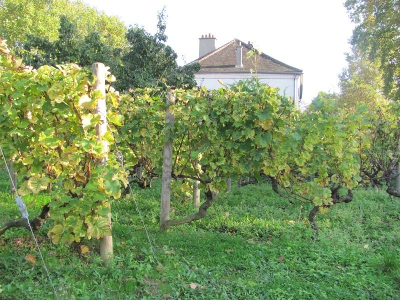 Jardin et parc de Bercy Img_3724