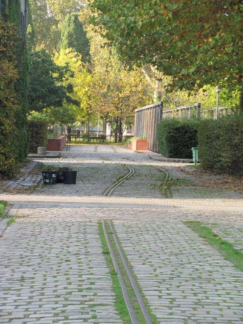 Jardin et parc de Bercy Img_3729