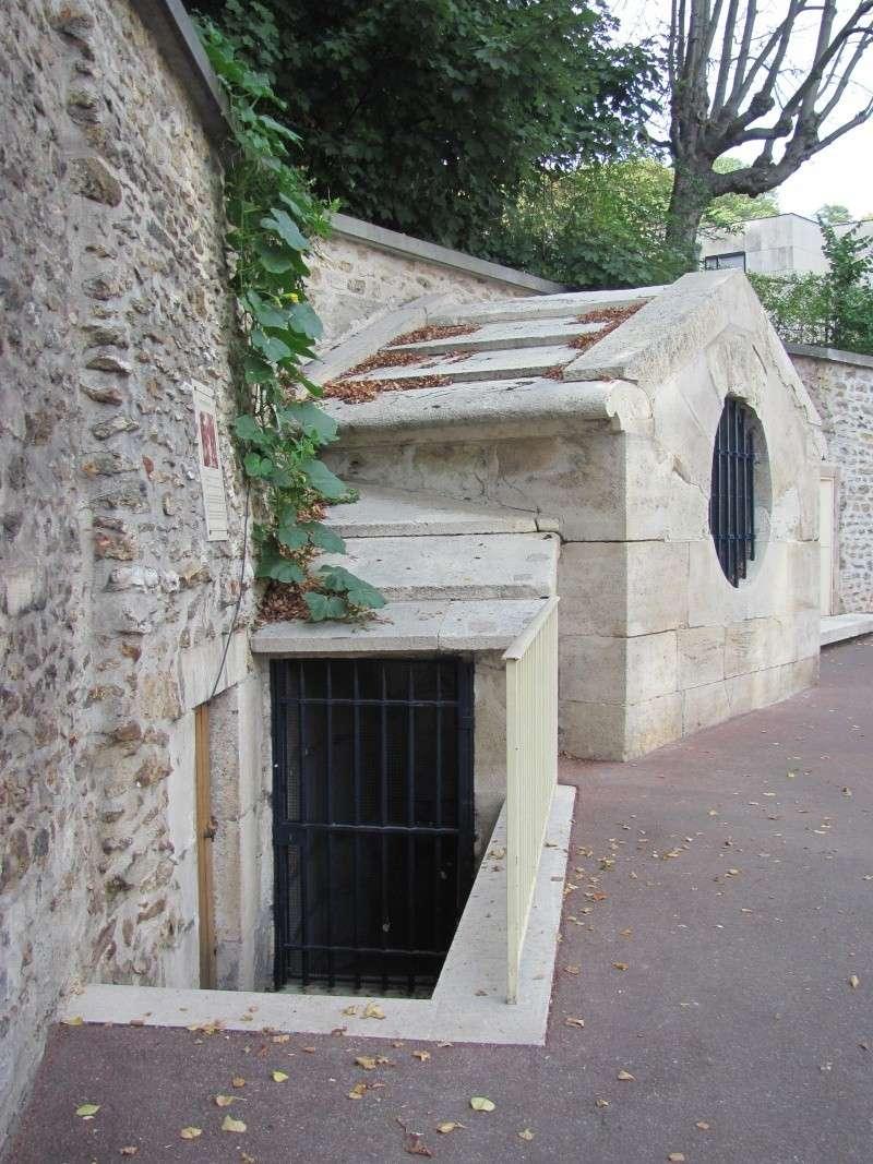 Fontaine du roi, Ville-d'Avray Img_8512