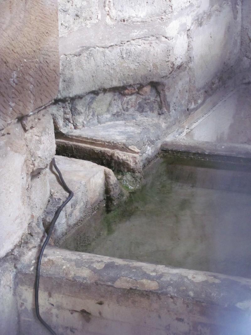 Fontaine du roi, Ville-d'Avray Img_8514