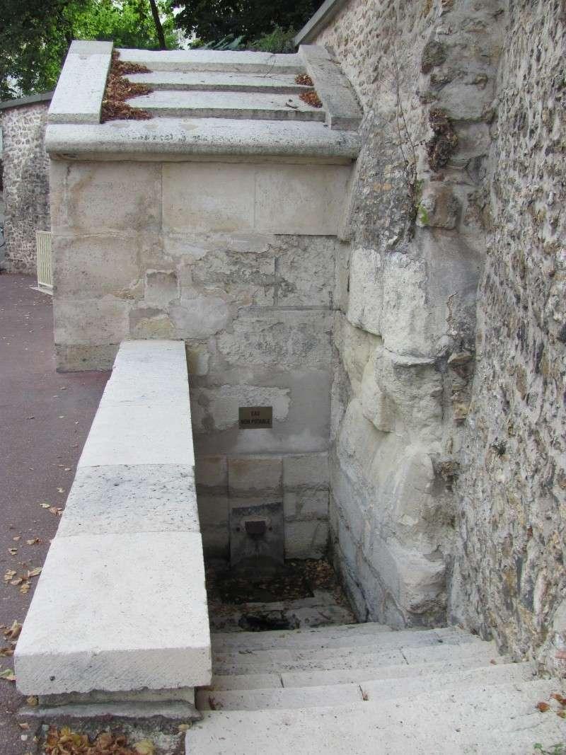 Fontaine du roi, Ville-d'Avray Img_8515