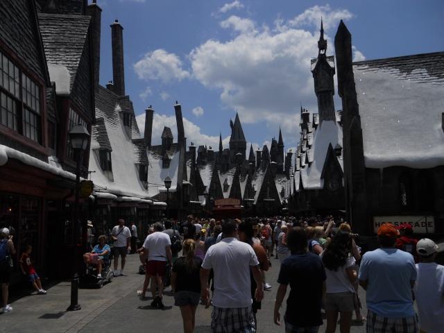Walt Disney World et Universal Orlando en amoureux du 5 au 13 juin 2011 (update page 5) - Page 3 Dscn2921