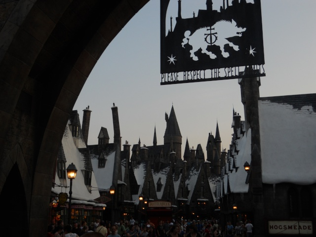 Walt Disney World et Universal Orlando en amoureux du 5 au 13 juin 2011 (update page 5) - Page 4 Dscn3025