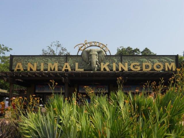 Walt Disney World et Universal Orlando en amoureux du 5 au 13 juin 2011 (update page 5) - Page 2 Tr210