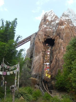 Walt Disney World et Universal Orlando en amoureux du 5 au 13 juin 2011 (update page 5) - Page 2 Tr510