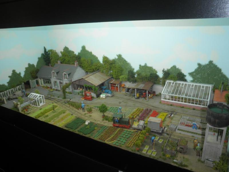 13 salon du train miniature Pb100117