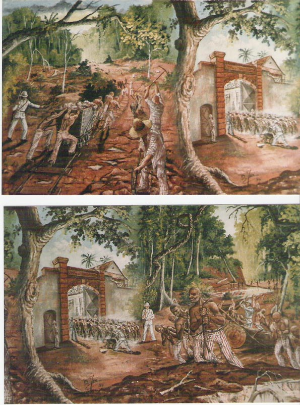 [Campagnes] Guyane - Page 10 Fresqu10