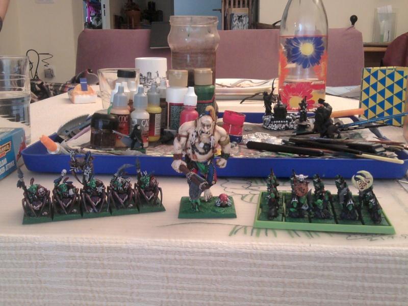 Arkeros Goblins, jinetes de araña y mi genorme gigante 2011-110