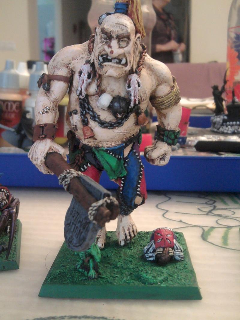 Arkeros Goblins, jinetes de araña y mi genorme gigante 2011-111
