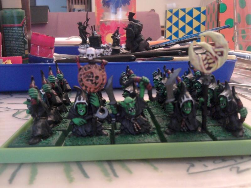 Arkeros Goblins, jinetes de araña y mi genorme gigante 2011-113