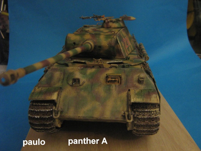 Le Panther A 211 du ss-Pz. Rgt 12.  - Page 5 Photo_58