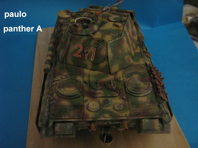 Le Panther A 211 du ss-Pz. Rgt 12.  - Page 5 Photo_60