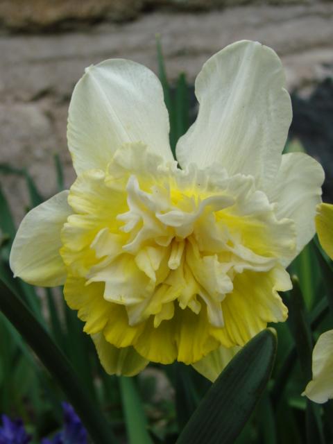 Le temps à Madelonnet du mois d'Avril 2008 1209