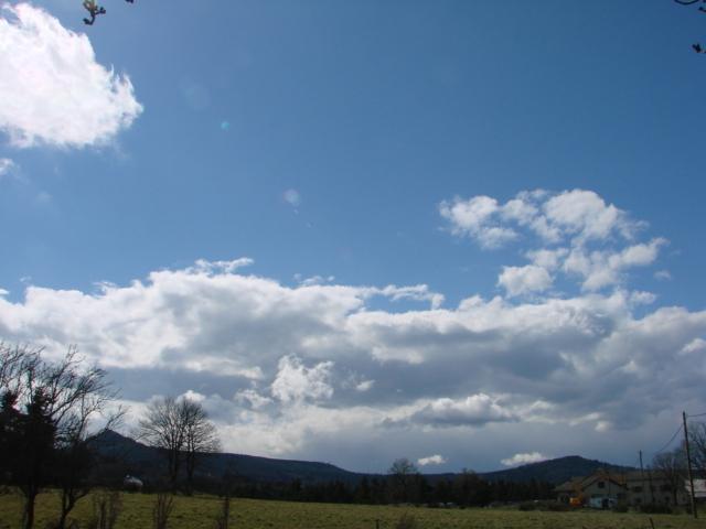 Le temps à Madelonnet du mois d'Avril 2008 1227