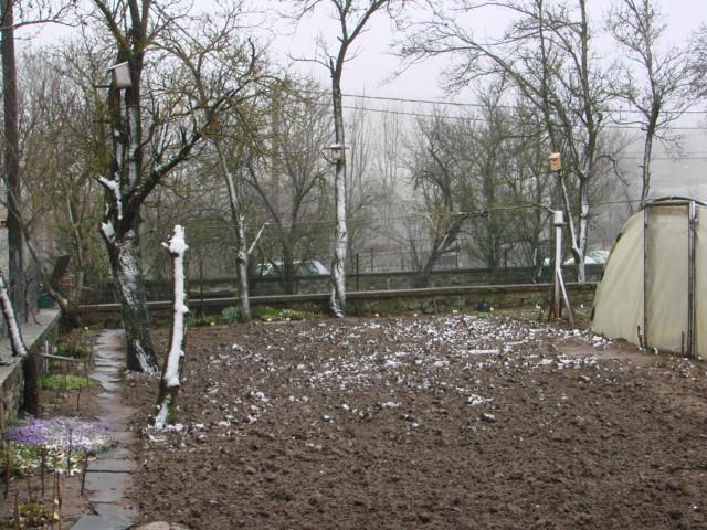 Le temps à Madelonnet du mois d'Avril 2008 1237
