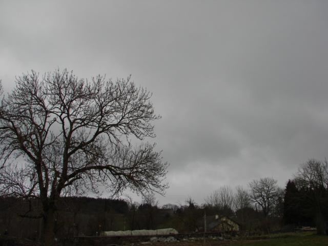 Le temps à Madelonnet du mois d'Avril 2008 15