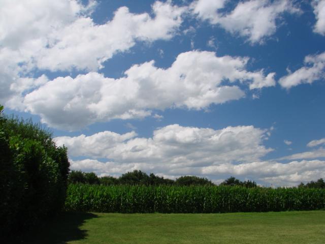 Le temps à Madelonnet du mois de Juillet 2008 15h3310