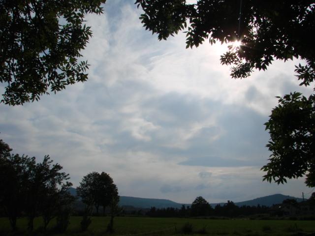 Le temps à Madelonnet du mois de Juillet 2008 1658
