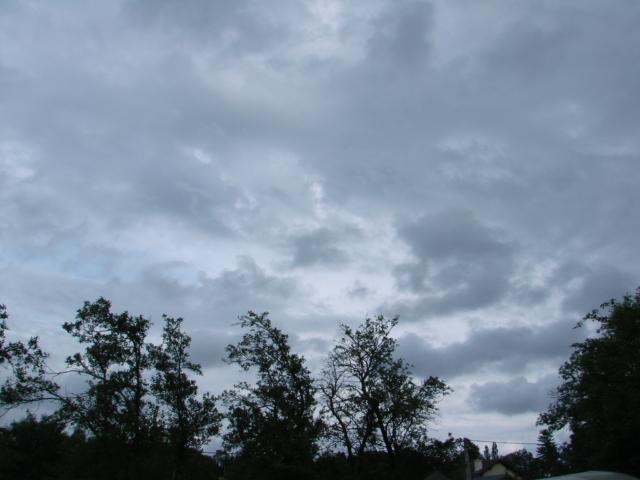 Le temps à Madelonnet du mois de Juillet 2008 1664