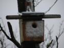 Le temps à Madelonnet du mois d'Avril 2008 20081104