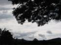Le temps à Madelonnet du mois de Juillet 2008 20082847