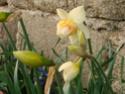 Le temps à Madelonnet du mois d'Avril 2008 2008_772