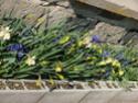 Le temps à Madelonnet du mois d'Avril 2008 2008_824