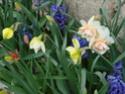 Le temps à Madelonnet du mois d'Avril 2008 2008_898