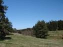 Le temps à Madelonnet du mois d'Avril 2008 2008_945