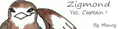 Informations Zigmon11