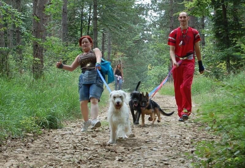 Pique-nique + randonnée en foret de fontainebleau 29/06/2008 - Page 3 Dsc_0029