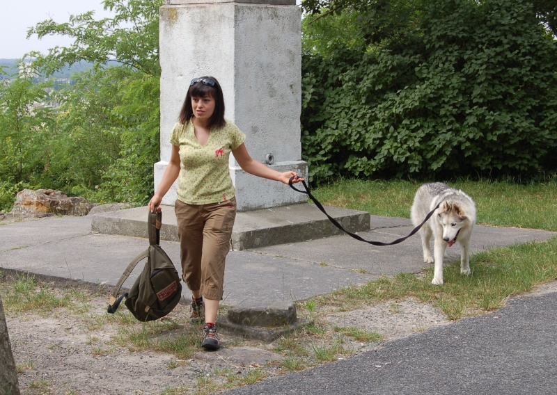 Pique-nique + randonnée en foret de fontainebleau 29/06/2008 - Page 3 Dsc_0033