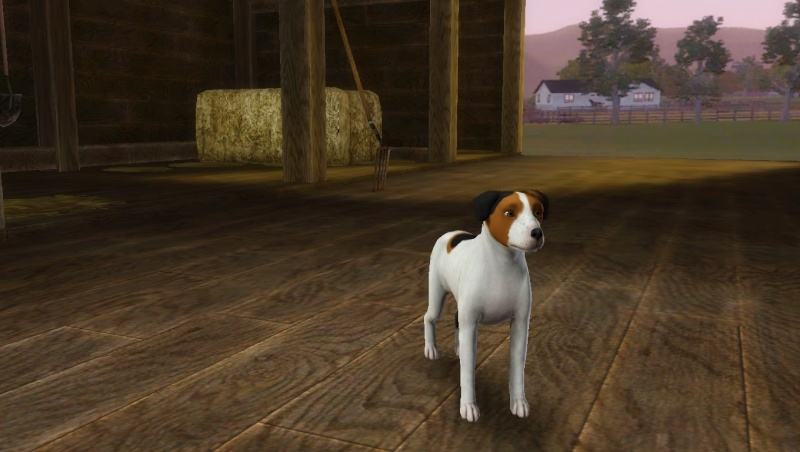Les Sims3 Animaux & Cie  - Page 4 Scree186
