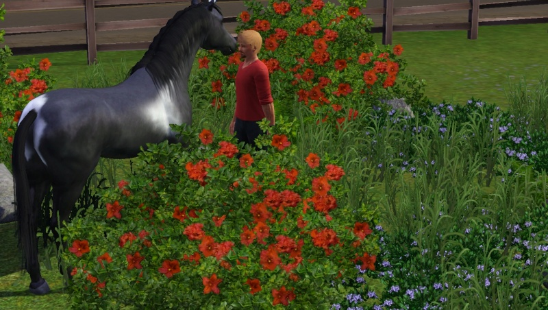 Les Sims3 Animaux & Cie  - Page 8 Scree197