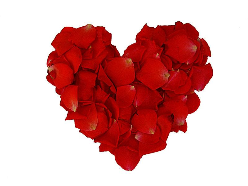قلوب 12005110