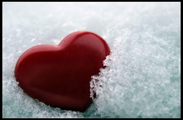 قلوب Normal11