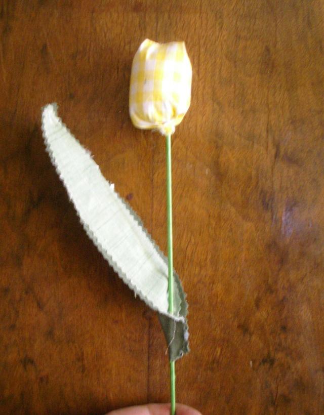 fruits et fleurs de lilas en février Tulipe11