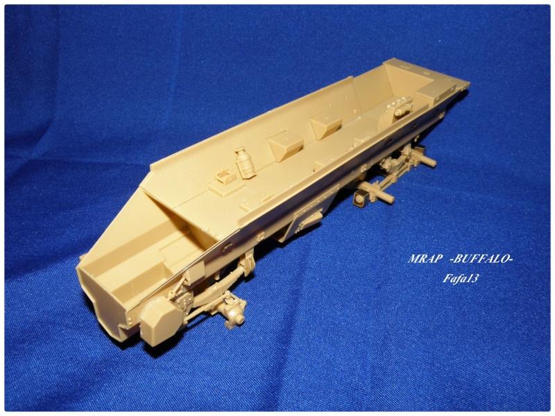 MRAP buffalo ADT P6280012