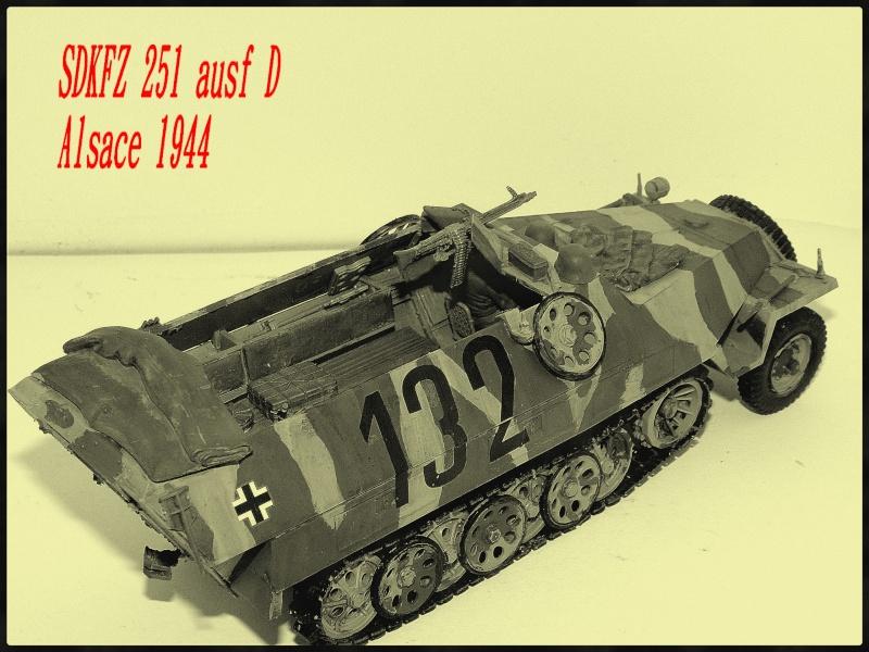 SDKFZ251/D P7170017