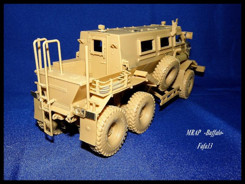 MRAP buffalo ADT P7190051