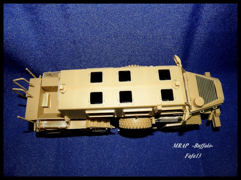 MRAP buffalo ADT P7190055