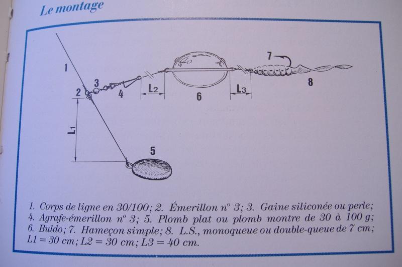 L'utilisation des leurres souples en pêche statique Dscf0134