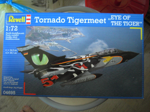 EYE OF THE TIGER 1/72 Pict5510